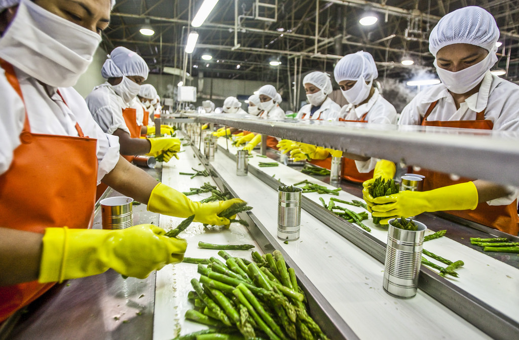 Sampada Scheme For Food Processing Sector In India