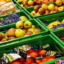 how to open an organic food store business